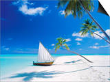 Dhoni Moored by Empty Beach, Maldives, Indian Ocean Posters by Papadopoulos Sakis