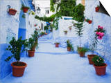 Blue Painted Steps With Flower Pots, Chefchaouen, Morocco, North Africa,Africa Prints by Guy Edwardes