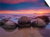 Moeraki Boulders, Otago, South Island, New Zealand, Pacific Posters by Ben Pipe