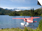 Float Plane Parked at Lake Side, Shrode Lake, Prince William Sound, Alaska, USA Art