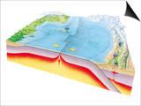 Plate Tectonics Posters by Gary Hincks