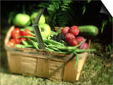 Fruit and Vegetables from the Garden, Kent Posters by David Tipling