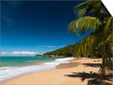 La Perle Beach, Deshaies, Basse-Terre, Guadeloupe, French Caribbean, France, West Indies Posters by Sergio Pitamitz