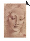 Testa di Giovinetta Prints by  Leonardo da Vinci