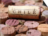 Wine Corks from Chile Prints by Frank Tschakert