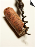 Wine Cork with Corkscrew Prints by Joerg Lehmann