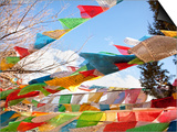 Prayer Flags Flying in Wind at Guishan Gongyuan Temple, Shangri-La (Zhongdian), China Prints by Lynn Gail
