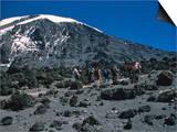 Kilimanjaro's Summit, Kilimanjaro Posters by Michael Brown