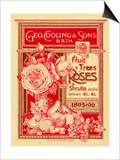 Fruit Trees, Rose and Shrubs Posters by George Cooling & Sons