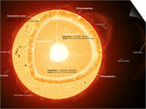 Illustration Showing the Various Parts That Make Up the Sun Posters by  Stocktrek Images