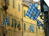 Flags of the Onda (Wave) Contrada in the Via Giovanni Dupre, Siena, Tuscany, Italy, Europe Posters by Ruth Tomlinson