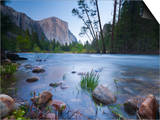 Merced River, Yosemite National Park, California, USA Posters by Alan Copson