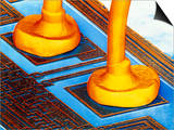 False-colour SEM Connector Wires on Silic Posters by Dr. Jeremy Burgess