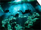 Diver Enters the Cavern System in the Riviera Maya Area of Mexico Prints