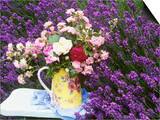 Roses on a Stool in a Field of Lavender Poster by Linda Burgess