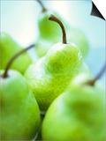 Green Pears Prints by Maja Smend