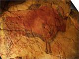 Altamira Cave Painting of a Bison Art by Javier Trueba