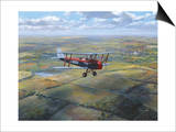D.H. Tiger Moth Print by Roy Cross