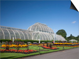 Palm House Parterre with Floral Display, Royal Botanic Gardens, UNESCO World Heritage Site, England Art by Adina Tovy