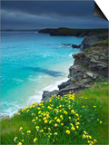 Mother Ivey's Bay, Padstow, Cornwall, England, United Kingdom, Europe Prints by Jeremy Lightfoot