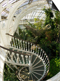 Staircase in Temperate House, Royal Botanic Gardens, UNESCO World Heritage Site, London, England Art by Peter Barritt