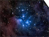 Pleiades, also known as the Seven Sisters Posters by  Stocktrek Images