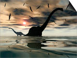 Diplodocus Dinosaurs Bathe in a Large Body of Water Art by  Stocktrek Images