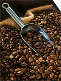 Coffee Beans with Metal Scoop in Sack Prints by Vladimir Shulevsky