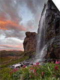 Alpine Waterfall with Wildflowers at Sunset, San Juan National Forest, Colorado, USA, North America Prints by James Hager