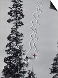 Two Skiers with Evergreen Prints