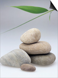 Pile of Stones Art by Sheila Terry