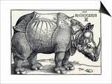 Durer's Rhinoceros, 1515 Prints by Sheila Terry