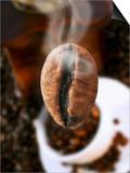 Roasted Coffee Bean (Steaming) Prints by Dieter Heinemann