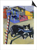 Cat of Burano (Chat de Burano) Prints by Isy Ochoa