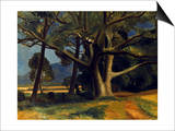Derain: Great Tree, 20Th C Prints by Andre Derain