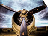 1945: Single Engine Plane Prints by Stephen Arens