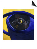 Cat in the Watering Can (Chat a L'Arrosoir) Posters by Isy Ochoa