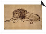 Lion Resting, Turned to the Left Posters by  Rembrandt van Rijn