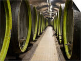Wooden Wine Barrels, Rosa Coeli Wine Cellar, Dolni Kounice, Brnensko, Czech Republic, Europe Print by Richard Nebesky
