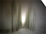 The Avenue Prints by Josh Adamski