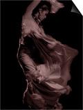 Flamenco Posters by Tim Kahane