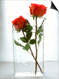 Two Red Roses in a Glass Vase Posters by Michael Paul