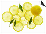A Whole Lemon, Lemon Slices and Leaves Prints by Petr Gross