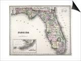 Florida Prints