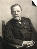 Louis Pasteur (1822-1895) Poster by Gaspard Felix Tournachon Nadar