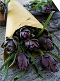 Artichokes in a Bag, Italy, Europe Posters by Nico Tondini