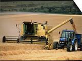Combine Harvester Off-loading Grain Art by Jeremy Walker