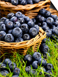 Fresh Blueberries in Wicker Baskets Art by Stuart MacGregor
