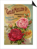 Seed Catalogues: The Geo. H. Mellen Co. Condensed Catalogue of Special Offers Prints