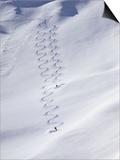 Utah, USA Posters
